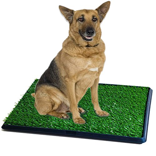 Synturfmats Pet Potty Patch Training Pad For Dogs Indoor